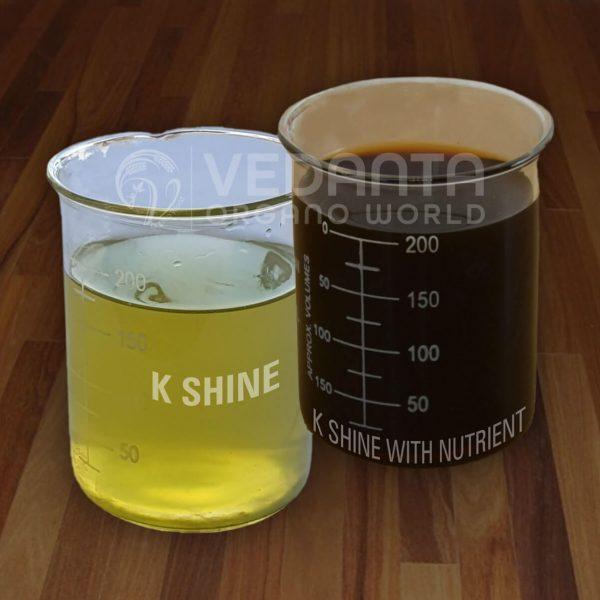 K Shine